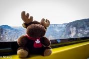Monty on the Skyway cable car