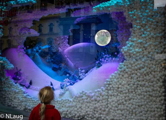 "Meyer window ""story"" display - pretty magical!"