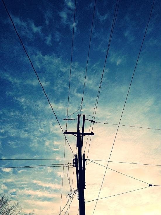 photo(8)