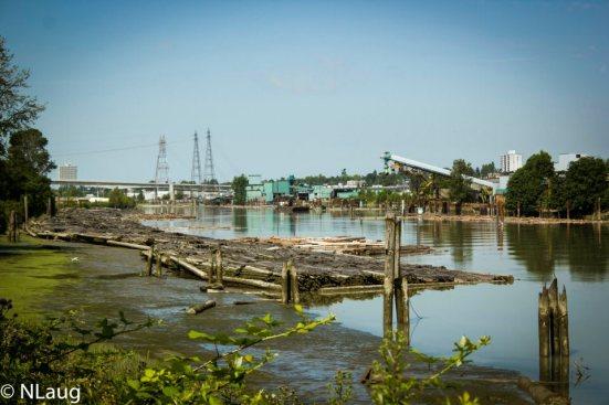 Mitchell Island