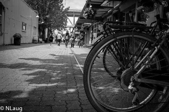Street.Langara.2013-4140