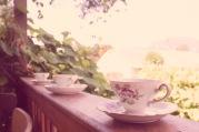 Grandma's China Cups!