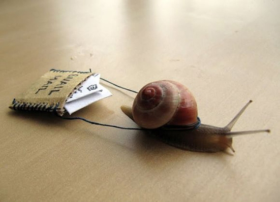 Real-Snail-Mail-Delivery-1