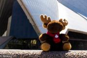 Monty outside the Sydney Opera House!